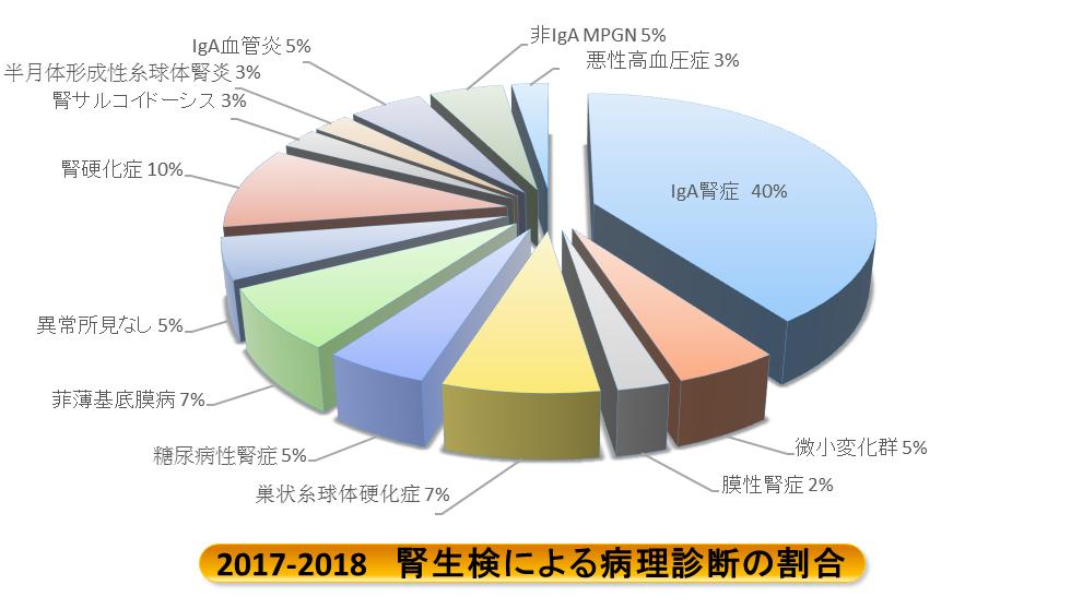 2017年~2018年 腎生検による病理診断の割合